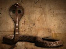 La cobra Imagen de archivo libre de regalías