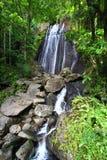 La Coca Falls Puerto Rico royalty-vrije stock afbeeldingen