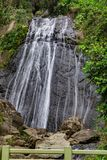La Coca Waterfall, EL Yunque photos stock