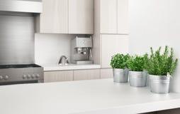 La cocina moderna con las plantas aromáticas, 3d rinde el ejemplo fotos de archivo