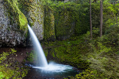La coda di cavallo superiore cade nella gola del fiume Columbia, Oregon Fotografie Stock