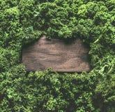 La col rizada deja el marco del fondo con la muestra de madera Verduras sanas del detox Concepto de consumición y de dieta limpio foto de archivo