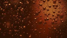 La cola bolle (ciclo senza cuciture)