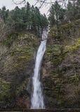 La cola de caballo cae en la garganta del río Columbia, Oregon Imagenes de archivo