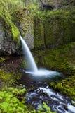 La cola de caballo superior cae en la garganta del río Columbia, Oregon Fotografía de archivo libre de regalías