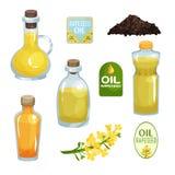 La colección de botellas de cristal y plásticas llenó del aceite de rabina natural, emblemas para los productos, hierba con peque stock de ilustración