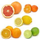 La colección de la fruta cítrica Imagen de archivo libre de regalías