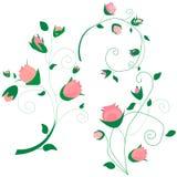 La colección de rosa rizado de la rama subió, ramo con las flores azules nomeolvides, brotes, troncos verdes, hojas en el fondo stock de ilustración