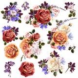 La colección o el sistema del vector realista florece para el diseño Imagen de archivo libre de regalías