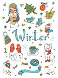 La colección asombrosa de invierno dibujado mano relacionó elementos gráficos Imagen de archivo libre de regalías