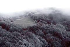 La colina Fotos de archivo