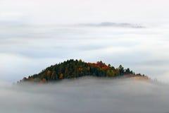 La colina con los árboles del otoño en la niebla se nubla, las ondas del blanco, mañana de niebla en un valle de la caída del par Foto de archivo libre de regalías