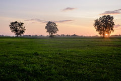 La colina de cruces, Lituania, Europa Imagen de archivo