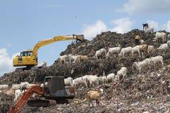La colina de la basura Fotos de archivo