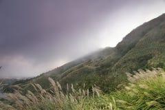 La colina de la niebla Fotos de archivo libres de regalías