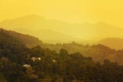 La colina de oro fotografía de archivo libre de regalías