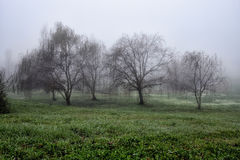 La colina de Toscana, paraíso está después VI Foto de archivo libre de regalías