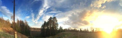 La colina del pino en un fondo del cielo azul y una primavera colocan con la hierba de un año pasado en la puesta del sol Fotografía de archivo libre de regalías