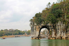 La colina del tronco del elefante Fotos de archivo libres de regalías
