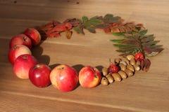 La collana di autunno lascia i dadi della frutta Fotografia Stock