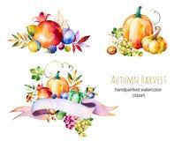 La collection colorée d'automne avec la chute part, des branches, baie Image libre de droits