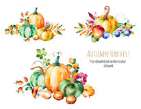 La collection colorée d'automne avec la chute part, s'embranche Photographie stock