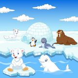 La collection d'animaux d'Arctics a placé avec la maison de glace d'igloo illustration de vecteur