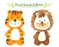La collection d'aquarelle de tigre et de Lion Cartoon d'isolement sur le fond blanc, Forest Animal Hand dessiné a peint le caract Illustration Stock