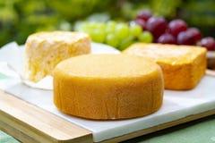 La collection de fromages, le Riche de Saveurs, le Langres et les fromages français de Peres de fèves de Le peche des ont servi d images stock