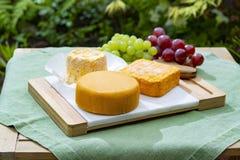 La collection de fromages, le Riche de Saveurs, le Langres et les fromages fran?ais de Peres de f?ves de Le peche des ont servi d photos libres de droits