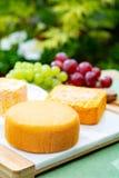 La collection de fromages, le Riche de Saveurs, le Langres et les fromages fran?ais de Peres de f?ves de Le peche des ont servi d image libre de droits
