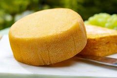 La collection de fromages, les fromages français de Peres de fèves jaunes de Riche de Saveurs et de Le peche des ont servi du pla photo libre de droits