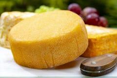 La collection de fromages, les fromages fran?ais de Peres de f?ves jaunes de Riche de Saveurs et de Le peche des ont servi du pla photographie stock libre de droits