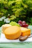 La collection de fromages, les fromages fran?ais de Peres de f?ves jaunes de Riche de Saveurs et de Le peche des ont servi du pla photos stock