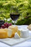 La collection fran?aise de fromages, le Riche de Saveurs jaune, le carreau de Vieux et les fromages de Peres de f?ves de Le peche image libre de droits