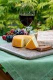 La collection fran?aise de fromages, le Riche de Saveurs jaune, le carreau de Vieux et les fromages de Peres de f?ves de Le peche photo libre de droits
