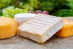 La collection fran?aise de fromages, le Riche de Saveurs jaune, le carreau de Vieux et les fromages de Peres de f?ves de Le peche photographie stock