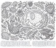 La collection noire et blanche du fossile de Triceratops de bande dessinée, gigantesque en glace, fougères antiques d'ammonites,  Photos libres de droits