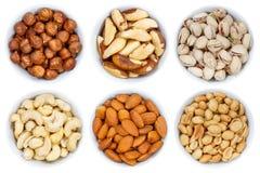 La collection Nuts d'écrou des arachides ci-dessus de noisettes roulent o d'isolement photographie stock libre de droits