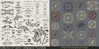 La collection ou l'ensemble énorme de vecteur de vintage s'épanouit illustration de vecteur