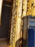 La colmena de la abeja enmarca abejas imagen de archivo