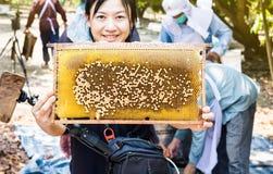 La colmena grande de la abeja presentó por las mujeres asiáticas sonrientes con worki de los granjeros Imagen de archivo