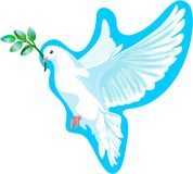 La colombe blanche de la paix, il est isolé Photo libre de droits