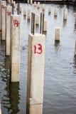 La colonna del oncrete sul cantiere Fotografia Stock