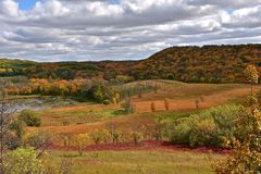 La coloración del otoño Fotografía de archivo libre de regalías
