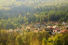 La coloración protectora de los pueblos se combina con el bosque Fotos de archivo libres de regalías