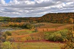 La colorazione di autunno Fotografia Stock Libera da Diritti