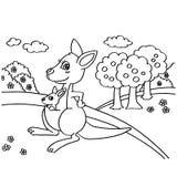 La coloritura del canguro impagina il vettore illustrazione di stock