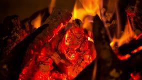La combustione della legna da ardere nel camino stock footage