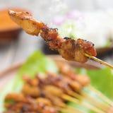 La comida asiática sacia Imagen de archivo libre de regalías